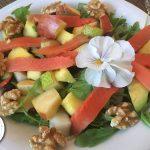 Tropical Salat mit Lachs, Mango, Cranberries, Avocado, Birne und Äpfeln. Salatsauce