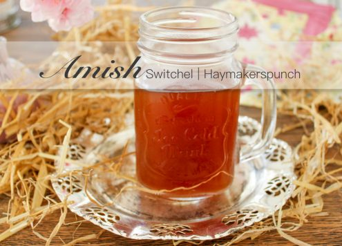 Amish, Country, Haymakers, Punch, Haymakerspunch, Punsch, Haymakerspunch, Switchel, Trendgetränk, 2017, DIY, Limonade, Gin, Cocktail, Soda, brauen, Ingwer, Apfelessig, Kokosblütenzucker, Kokos, Kokosblüte
