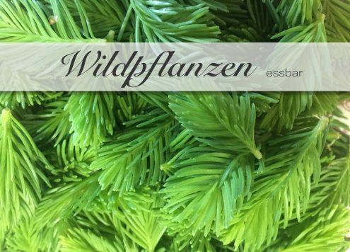 Essbare Wildpflanzen in Deutschland.